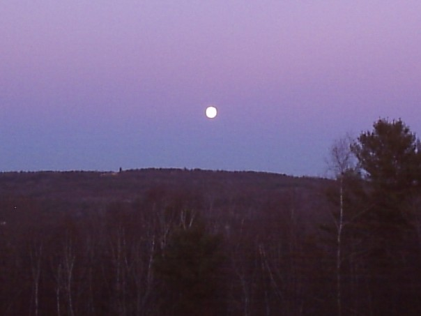 Full moon view at the rabbitry