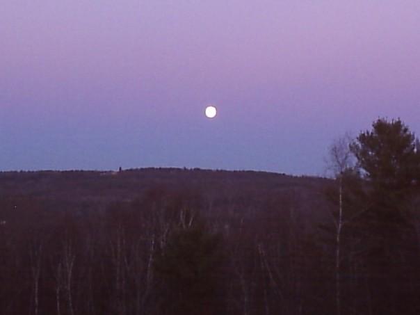 Full moon view at the rabbitry